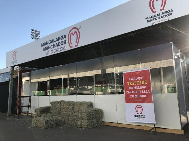 Maior associação de equinos do Brasil inicia atividades em Cuiabá durante 53ª Expoagro