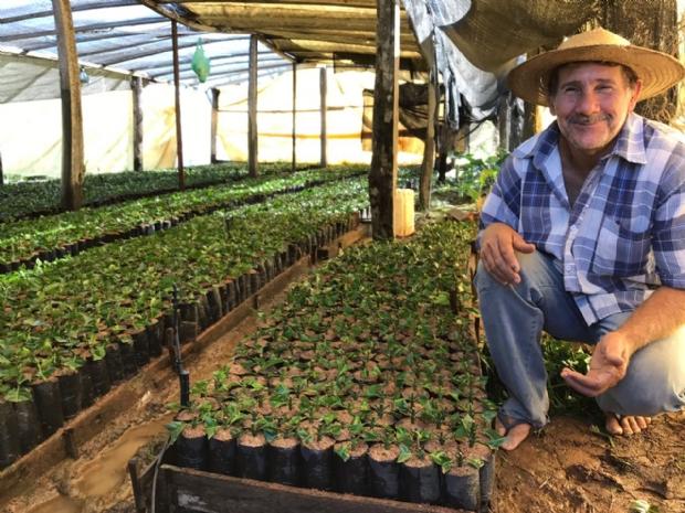 Sicredi libera R$ 126,9 milhões para  a agricultura familiar