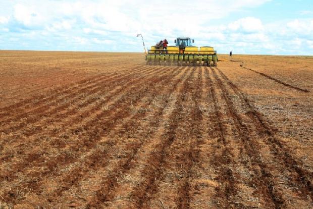 A uma semana do fim de prazo para  cadastro, área de plantio de soja em MT ultrapassa 6 milhões de hectares