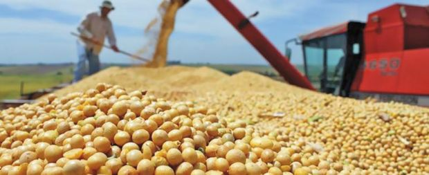 Monsanto reafirma legalidade de patente após ação judicial da Aprosoja; conduta já foi questionada