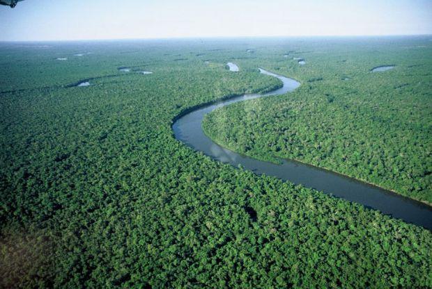 Governo estuda construir hidrelétricas que vão inundar área de floresta cinco vezes maior que Cuiabá