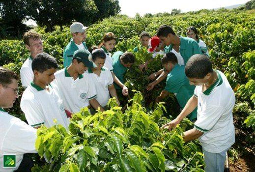 Pronatec Agro disponibiliza mais de 1 mil vagas para jovens agricultores de MT