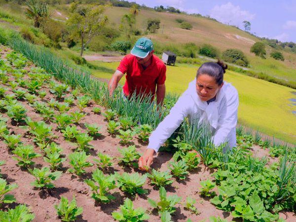 Deputado frisa importância da assistência e extensão rural para Mato Grosso e tecnologia no campo