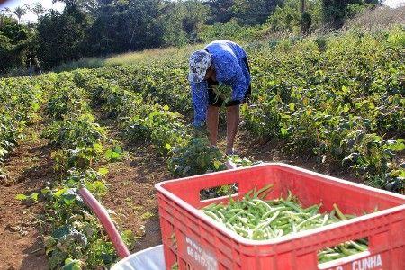 Intermat cria frente de trabalho e prioriza 122 assentamentos em Mato Grosso