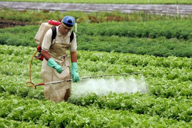 Combate a agrotóxicos ganha reforço com Fórum em MT; produtos estão associados a 45,9% de doenças