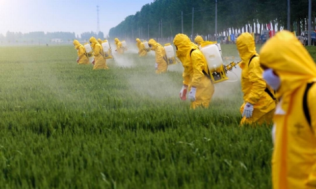Pesquisa aponta que agrotóxicos contaminam água da chuva e de poços artesianos em cidades de MT