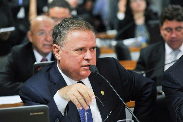 Comissão no Senado aprova anistia a agricultor de baixa renda por crime ambiental