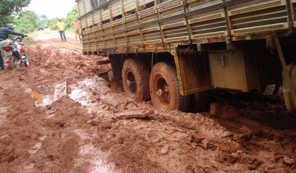 Estradas ruins, atoleiros e pontes caídas impedem transporte de gado para frigoríficos