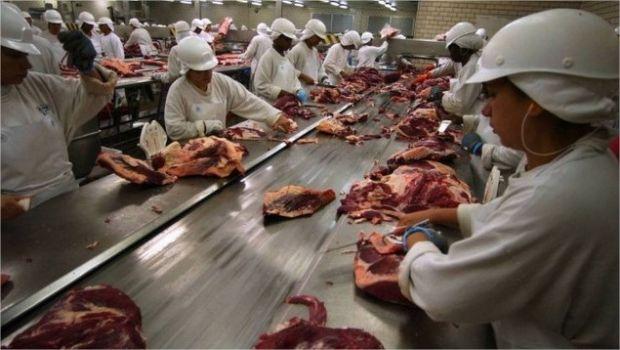 Carne Fraca, corrupção e boicote: pecuária enfrenta instabilidade e fecha 2017 com arroba  em recuperação
