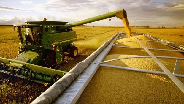 Agronegócio impulsiona PIB com alta de 49%, mas indústria e serviços geram mais emprego e renda