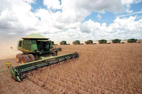 Situação de emergência por seca é homologada em quatro cidades de Mato Grosso