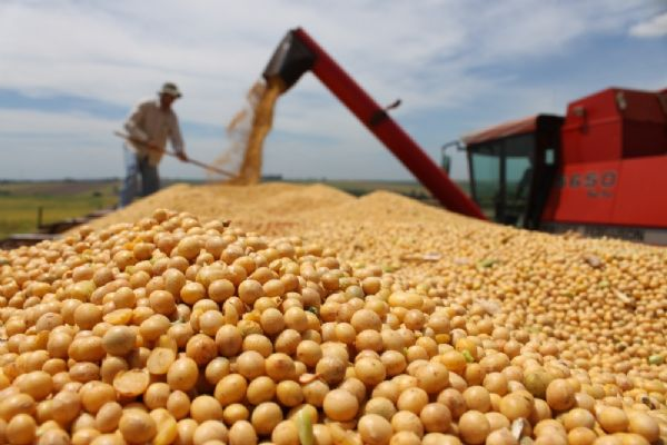 Mato Grosso é o 2º maior gerador de empregos em 2016; agropecuária e indústria seguram