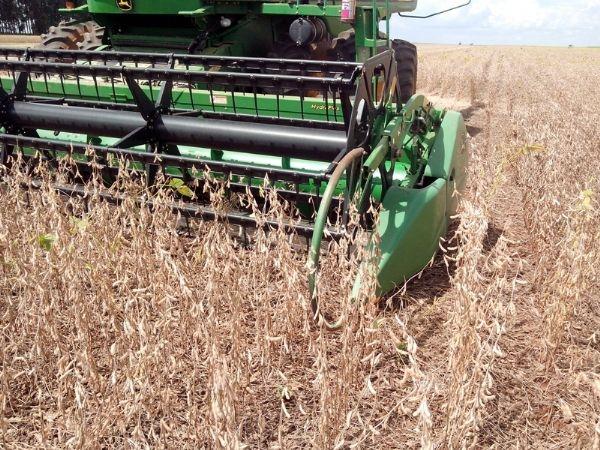 Clima instável acelera a colheita de grãos no Centro-Oeste brasileiro