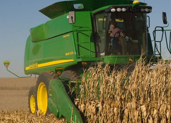 Mato Grosso garante semeadura do milho dentro da janela ideal
