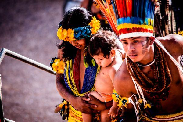 Mato Grosso pode ter 5,3 mi/ha produtivos transformados em terras indígenas, revela Famato