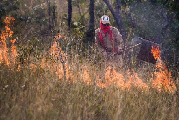 Número de queimadas em setembro já é maior do que o registrado em junho e julho