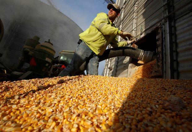 Obra da maior usina de etanol de milho do Brasil é adiada e empresa aguarda licença ambiental