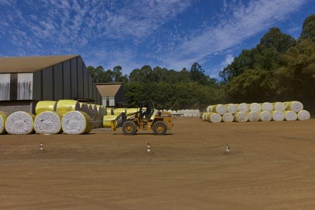 Com lance mínimo de R$ 64 milhões, fazenda de Grupo JPupin em MT vai a leilão eletrônico