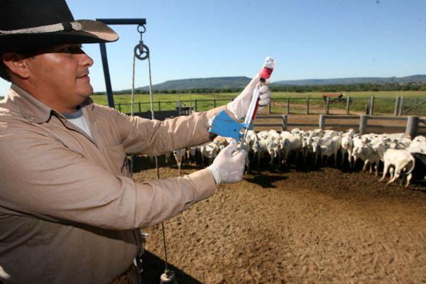 """Fesa """"doa"""" 500 mil euros junto ao Fundo Mundial da OIE para sanidade animal"""