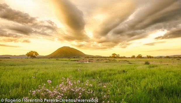 Pantanal mato-grossense será palco de corrida de aventura de paramotor