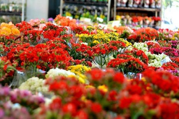 Feira de flores de Holambra prorroga data para atender servidores