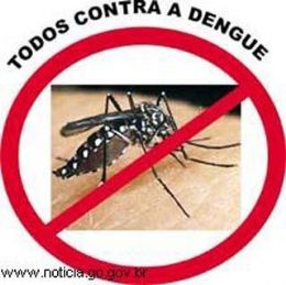Saúde notificou 3.378 casos de dengue e três mortes em 2011
