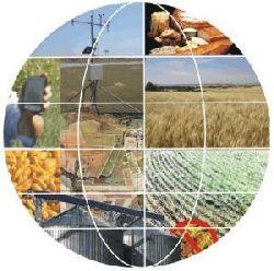 MT tem 24 cidades na lista das 100 com maior PIB agropecuário; confira