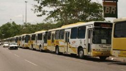 Empresa obtém liminar e consegue recuperar 19 ônibus apreendidos
