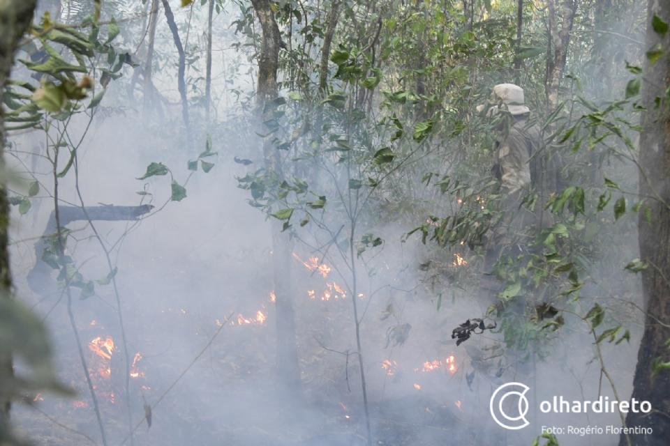 Presos serão usados como mão de obra no combate a incêndios em Chapada dos Guimarães