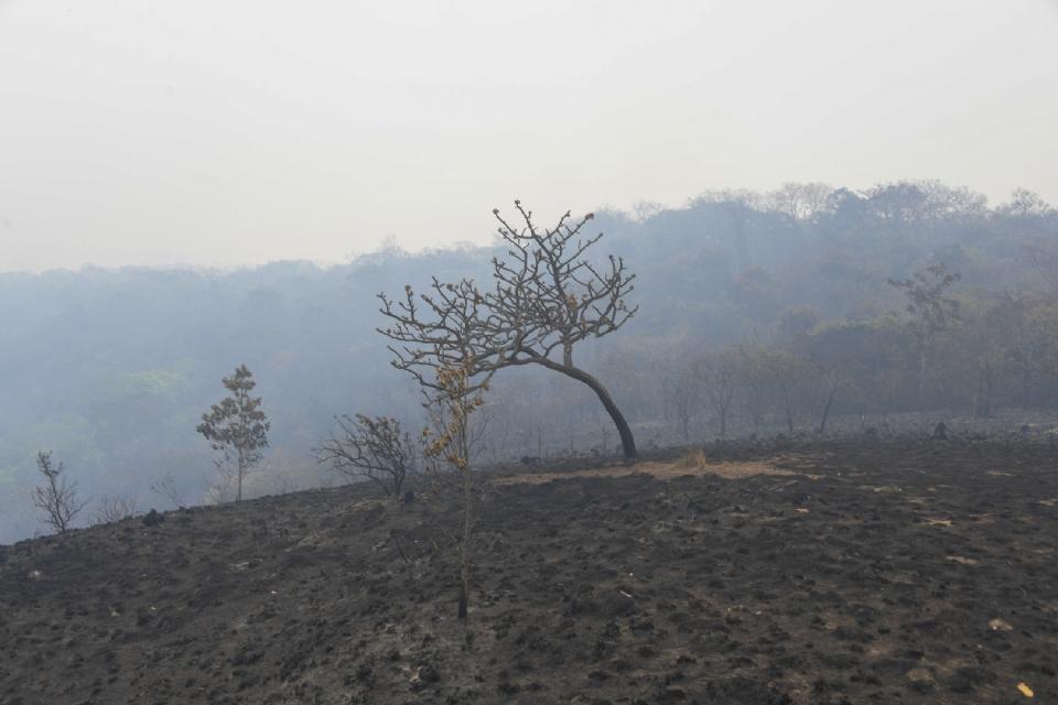 Governo emprega maior recurso dos últimos 10 anos para prevenir e combater queimadas em MT