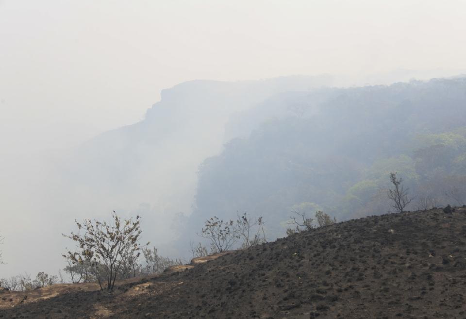 Área incendiada em Mato Grosso em 2021 já é quase cinco vezes o tamanho de São Paulo