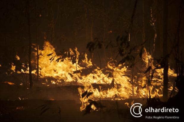 Fogo no subsolo, dificuldades de acesso e 'improvisos': OD mostra combate a incêndio que devasta Pantanal