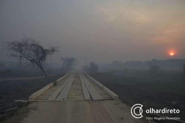 Pesquisadora da UFMT afirma que desastre no Pantanal é consequência de mudanças climáticas