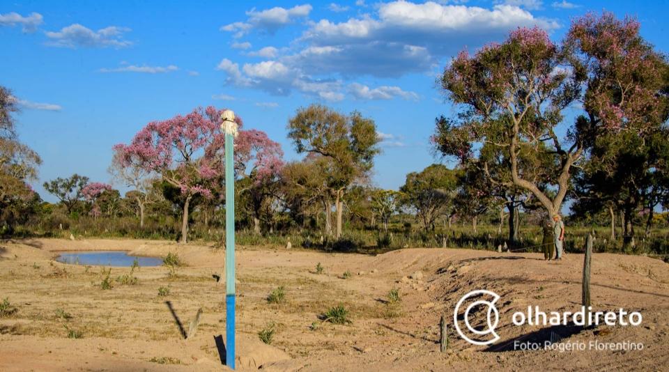 Associação irá construir dez corixos artificiais para matar a sede de animais e ajudar a combater incêndios no Pantanal