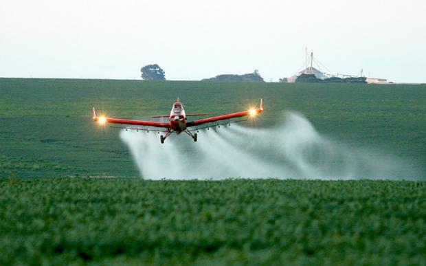 Avião agrícola despeja agrotóxico sobre plantação orgânica e causa prejuízo a produtores; veja vídeos
