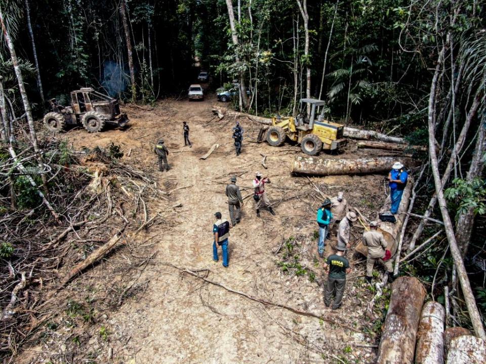 Proposta de lei prestes a ser aprovada pela Assembleia Legislativa dá anistia a desmatadores em Mato Grosso