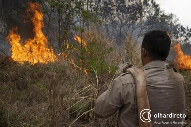 Estudo do TCE aponta que MT tem 7 cidades entre as 10 com mais focos de incêndio no país