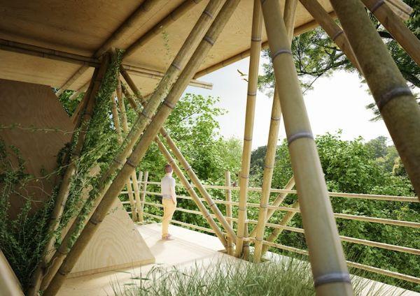 Hotel de bambu faz visitantes se sentirem como pássaros nas árvores