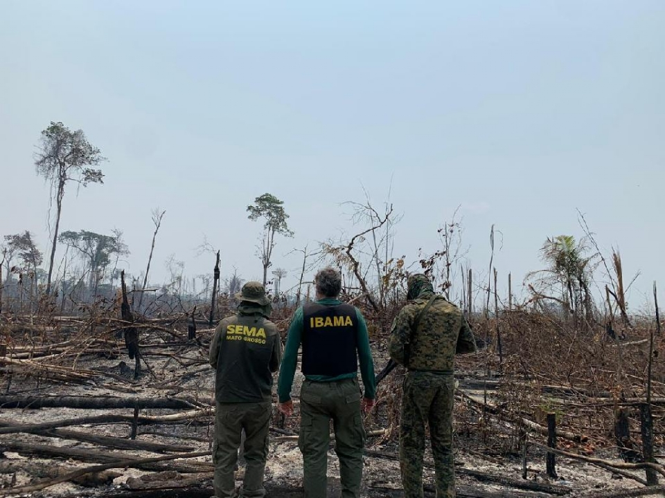 Operação conjunta em Colniza contra desmatamento ilegal