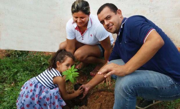Aplicativo proporciona que moradores solicitem plantio de mudas de árvores em residências