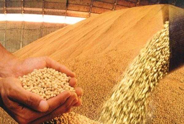 Custo de produção da soja deve sofrer aumento significativo por alta do dólar