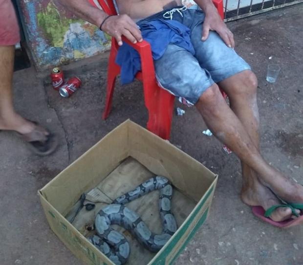 Homem é preso por assustar pessoas com jibóia em Várzea Grande