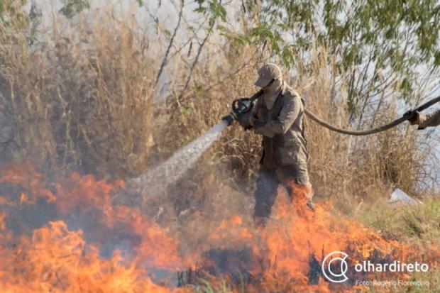 Ciopaer buscou água na piscina do Brasil Beach para apagar incêndio; veja vídeo e fotos do combate