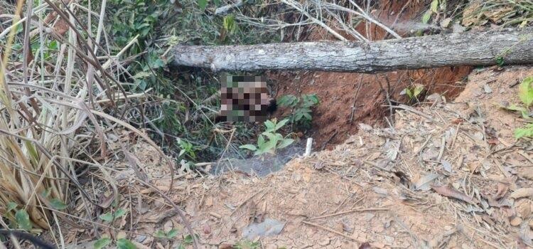 Jovem jogado nu em ribanceira foi morto por ser membro do PCC