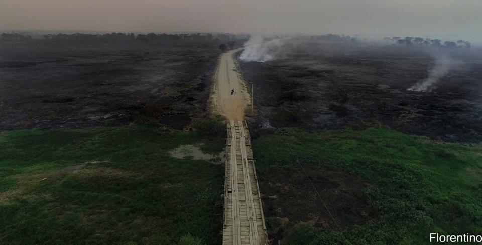 Em 2020, Pantanal teve 23 mil km quadrados consumidos pelo fogo.