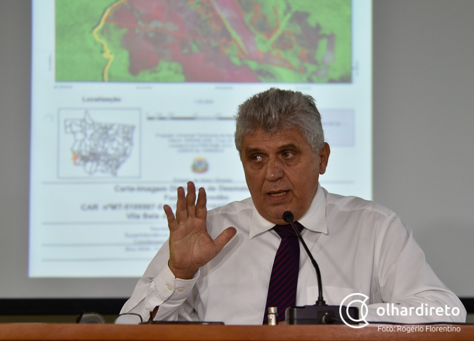 """Scaloppe diz que marca do PL do Licenciamento é """"o mero e mesquinho interesse de aumento de lucro"""""""