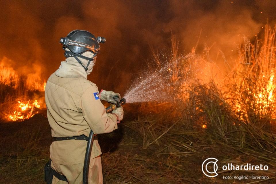 Pantanal mato-grossense reduziu em 80% o número de focos de calor