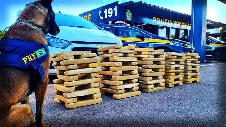 PRF apreende 113 quilos de maconha escondidos em Prisma; motorista receberia R$ 3 mil