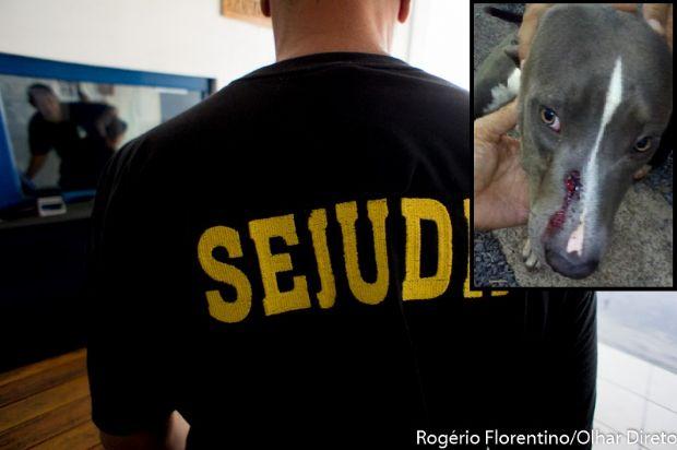 Casa de agente penitenciário é atacada por supostos criminosos do Comando Vermelho e cachorro é ferido