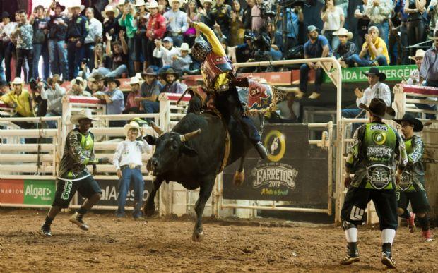Peão de Taubaté (SP) que sofreu acidente em MT foi campeão na montaria em touros